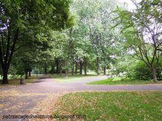 patrząc w jedną stronę: Park Moczydło