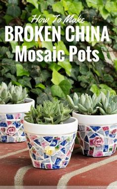 Glue broken china tiles onto painted terra cotta pots to make broken china mosaic pots. Great idea for DIY crafts and gifts! by patrica