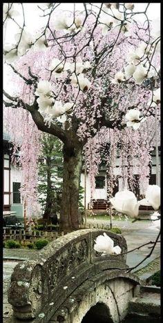Kozen-ji, Yamagata, Japan | Photo by William Corey