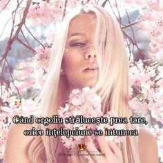 Când orgoliul strălucește prea tare orice înțelepciune se întunecă.  Zi frumoasă prieteni plină de Iubire... Trăire... și Oameni frumoși! _________ Cele mai frumoase postări  Despre Oameni frumosi   Ne vedem joi la webinar http://ift.tt/2vU4DD1