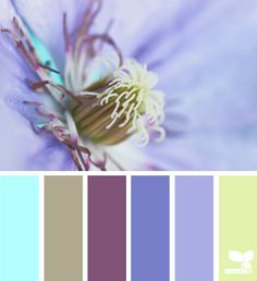 flora color via Design-Seeds Colour Schemes, Color Trends, Color Combos, Color Patterns, Colour Palettes, Coordination Des Couleurs, Color Lila, Design Seeds, Colour Board