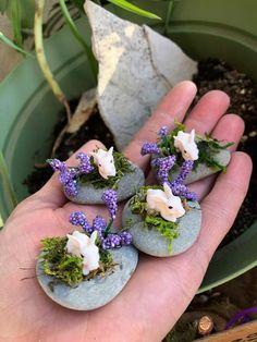 Miniatur-Hase Fairy Garden-Hase Mini-Kaninchen Terrarium-Kaninchen Fairy Gar Miniature Bunny Fairy G Indoor Fairy Gardens, Miniature Fairy Gardens, Fairy Gardening, Organic Gardening, Container Gardening, Miniature Fairies, Indoor Gardening, Miniature Rabbits, Tiny Bunny