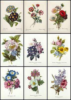 Beautiful vintage flower cards