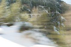 http://www.fubiz.net/en/2015/01/13/camera-in-motion-by-rolf-sachs/