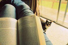 Long reads, Kitty Cuddles...