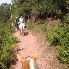 """Trail riding in Mascota, #Mexico at the Sierra Lago Resort! Such a great experience beautiful place!  Don't forget to check out our last post """"Have Less."""" Link in bio!  #KineticKennons #Horse #Travel #Mexico #Nature #newyear"""