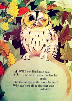 Wise Old Owl, a Singable Illustrated Mother Goose Nursery Rhyme Owl Quotes, Words Quotes, Wise Words, Life Quotes, Owl Sayings, Happy Quotes, Wisdom Quotes, Pomes, Wise Owl
