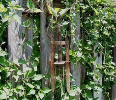 Vintage Garden Mole Trap Primitive Garden Art