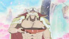 One Piece Robin, One Piece Fan Art, One Piece Chopper, Monkey D Luffy, Zoro, Animation, Kaiser, Anime Naruto, Princess Zelda