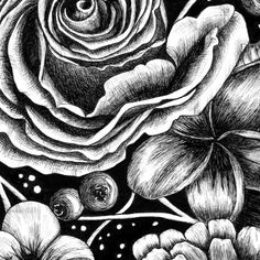 Botanical Pen Drawing Close-up - Jill Dimond Art Biro Art, Biro Drawing, Pen Drawings, Graphite Drawings, Flower Pens, Flower Art, Close Up Art, Bird Artists, Watercolor Painting Techniques