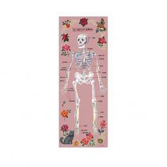 Human skeleton' Wall paper - Pink