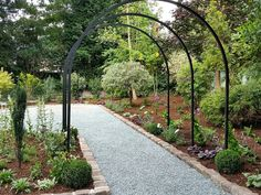 Metal garden arches from Harrod Horticulture #gardenarches #metalarches #pergola