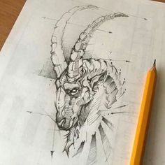 Animal Sketch Psdelux by psdeluxe. on Animal Sketch Psdelux by psdeluxe. Tattoo Sketches, Drawing Sketches, Tattoo Drawings, Art Drawings, Drawing Faces, Drawing Tips, Animal Sketches, Animal Drawings, Pencil Drawings