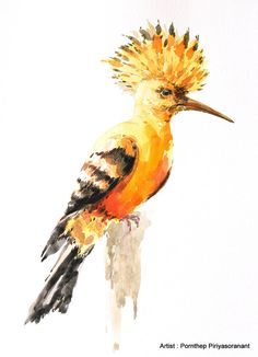Hey, I found this really awesome Etsy listing at https://www.etsy.com/listing/227671062/hoopoe-bird-painting-bird-watercolor