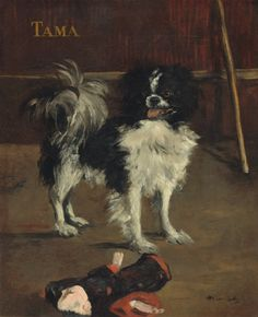 """""""Tama the Japanese Dog"""" (circa by French artist - Édouard Manet Oil on canvas, 61 x 50 cm.), National Gallery of Art - Washington, D. National Gallery Of Art, Oil On Canvas, Canvas Prints, Art Prints, Monet, Edouard Manet Paintings, Japanese Dogs, Japanese Chin, Gato Animal"""