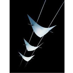 Inspirational Oligo Leuchte zum Seilsystem Light Line Iguna