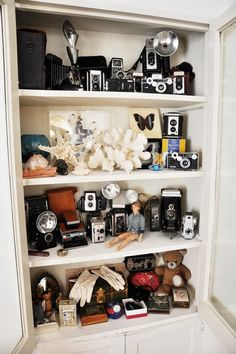 How To Turn Your Vintage Camera Collection into Wall Art   Apartment Therapy