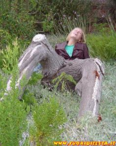 Strange, Funny And Weird Trees Nature Pictures, Girl Pictures, Funny Images, Funny Photos, Weird Facts, Fun Facts, Weird Trees, Bizarre Pictures, Unique Trees
