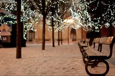 A place to rest behind the market by Pei Ketron on Flickr | #snow #winter #prague #christmas