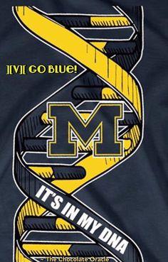 Michigan Go Blue, State Of Michigan, University Of Michigan, Detroit Football, Michigan Wolverines Football, Michigan Athletics, College Football, Detroit Lions Wallpaper, Humberto Ramos