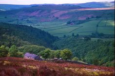 the English moors