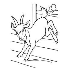 Camping Coloring Pages, Farm Animal Coloring Pages, Dog Coloring Page, Easy Coloring Pages, Disney Coloring Pages, Coloring Pages To Print, Coloring Books, Free Coloring, Fall Coloring Sheets