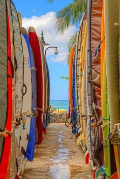 Waikiki Beach, Oahu, Hawaii.I would love to go see this place one day.Please check out my website thanks. www.photopix.co.nz