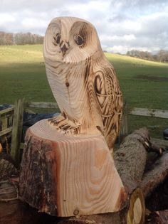 Chainsaw carved Owl in Art, Direct from the Artist, Sculptures Chainsaw Wood Carving, Wood Carving Art, Wood Carvings, Art Sculpture En Bois, Chain Saw Art, Tree Carving, Wood Creations, Owl Art, Tree Art