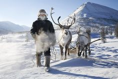 Siberia.siberian tradition to race in sled races competing against people from the russia state