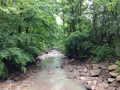 This pic is from the bridge east of the vehicle ford looking uphill toward Revere Road. The Buckeye Trail hugs the left bank with road just beyond. The Sand Run Trail is on the right bank. The handy water bubbler can be found nearby right on the trail.