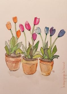 Ideas Flowers Sketch Tulip - Image 15 of 20 Watercolor Pictures, Pen And Watercolor, Watercolor Flowers, Watercolour Painting, Painting & Drawing, Watercolors, Tulip Drawing, Watercolor Artists, Watercolor Portraits