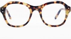 oliver goldsmith o'connell in tokyo tortoise.