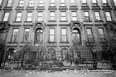 Google Image Result for http://blog.brooklynprints.com/images/2011030718301105_clinton_hill_brownstones.jpg