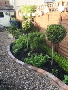 Small Narrow Garden Ideas, Pergola, Shed, Patio, Plants, Outdoor Pergola, Plant, Barns, Sheds