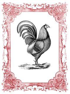 *the graphics fairy llc*: vintage clip art - romantic frames - christmas colors. Vintage Frames, Vintage Cards, Vintage Clip, Chicken Clip Art, Rooster Decor, Chickens And Roosters, Graphics Fairy, Galo, Christmas Colors