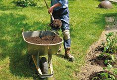 Influência do pH na jardinagem - Jardinagem - Plantas, Flores e Jardins