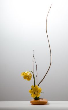 370 best Ikebana and Japanese Style Floral Design images . Ikebana Flower Arrangement, Ikebana Arrangements, Modern Flower Arrangements, Flower Vases, Flower Art, Cactus Flower, Art Floral Japonais, Art Japonais, Arte Floral