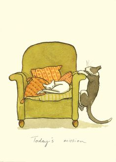 M67 TODAY'S MISSION - A Two Bad Mice Card by Anita Jeram