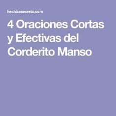 4 Oraciones Cortas y Efectivas del Corderito Manso | Oraciones ...