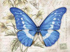 Lang March 2015 Desktop Wallpaper   Butterflies