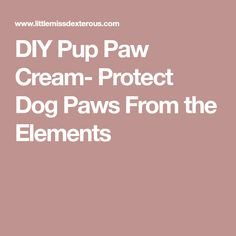 DIY Pup Paw Cream- Protect Dog Paws From the Elements