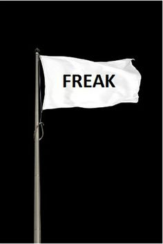 Freak flag for my home - フリークフラグ立てました。 (via Milenka Backx)