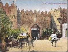 باب دمشق(باب العمود) 1895- ارشيف جامعة بيرزيت