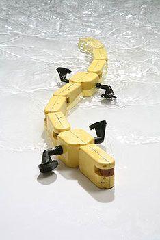 Salamander robot  #YOSal
