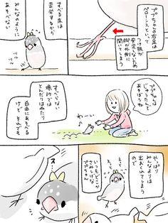 小鳥漫画@yaya (@yaya_cards) さんの漫画 | 150作目 | ツイコミ(仮)