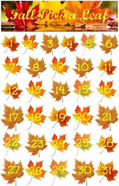 It's FALL y'all!    I'm doing a giveaway!!!   Pick a leaf! Only one person per leaf please ☺️so pick your lucky number (1-31) quickly!  I have 3 lucky numbers written down. Whomever picks those lucky numbers will win a R+F $20 gift certificate to be used in October!    Comment below with your number and I will draw on Oct. 1.