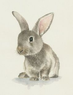 Rabbit watercolor, original bunny painting di Ddrawings su Etsy