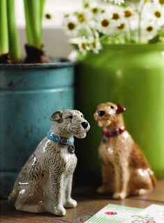 I want these salt and pepper shakers form Cath Kidston                                                                                                                                                                                 More