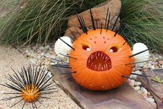 """Scary Sea Creatures"" pumpkin by Robin P., Carrollton, TX"
