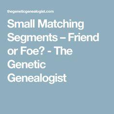 Small Matching Segments – Friend or Foe? - The Genetic Genealogist